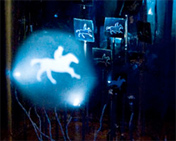 Ghost Horse by Michael Brown